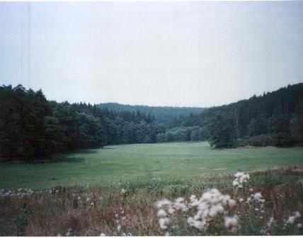 příroda u Jedovnice