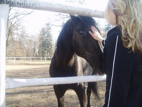 Tak koně toho si přeju už hodně dlouho!:)))