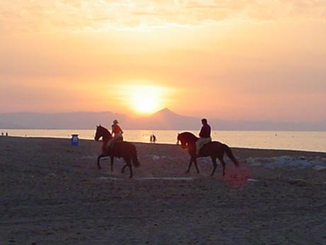 Moře, západ slunce,koně... co víc si přát...