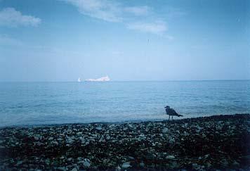 volnost i osamění
