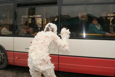 cestujici nemužou pochopit co se děje...!31!
