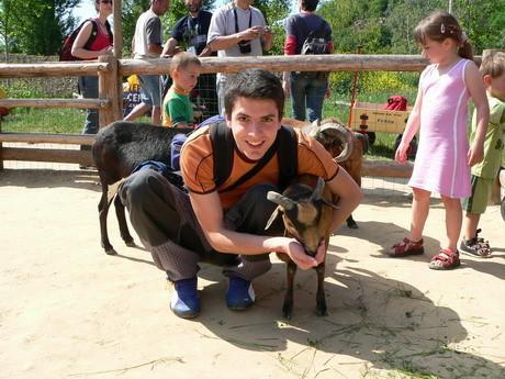 Miluju kozy, kozy nade vše, kozy sou všechno;))