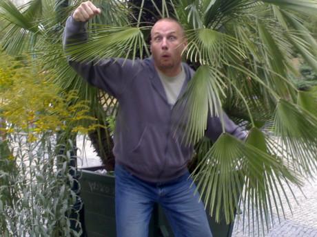 opičáci žijí na palmách !122!