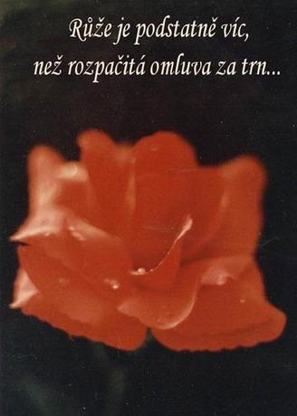 Lemujinka008