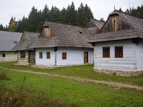 rikinka1