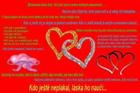 Ilousek7