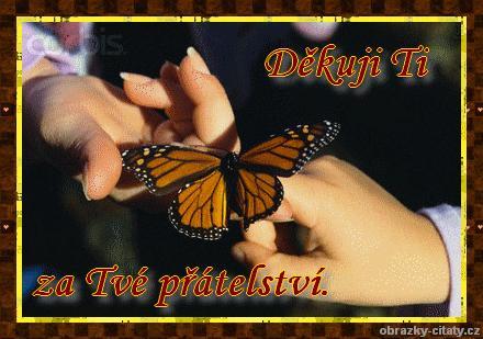 adinka013