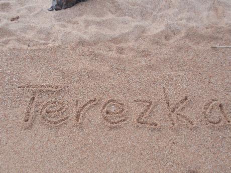 Terka-81-
