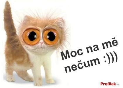 Puya-Yeah