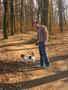 Já a tetin pejsek Vikinka v lese