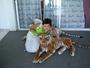 ze by zkroceni zlych tygru? :)
