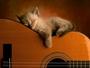Hraj tiše,ať mě nevzbudíš...